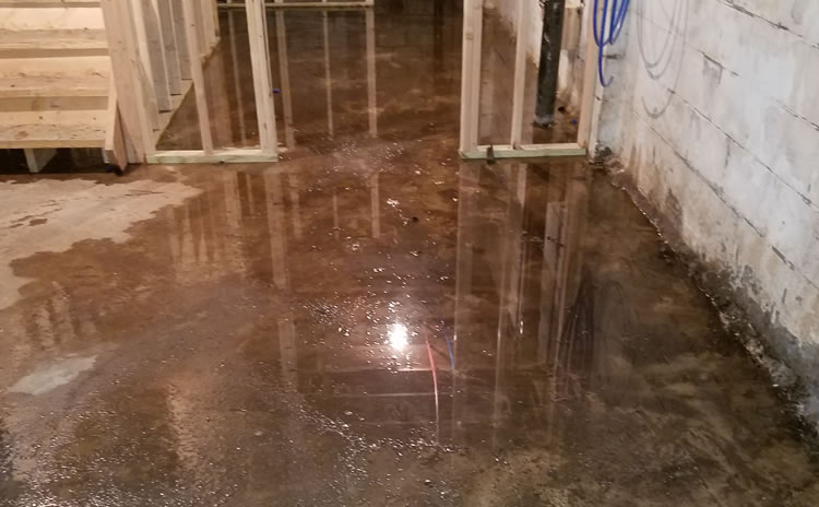 Basement Waterproofing | B-Dry System Cleveland - Warning Signs