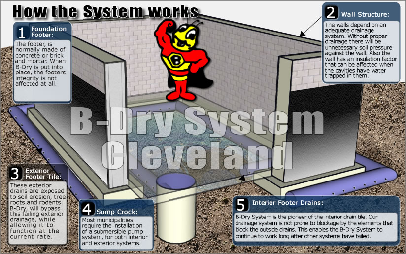 Basement Waterproofing B Dry System Cleveland Facts