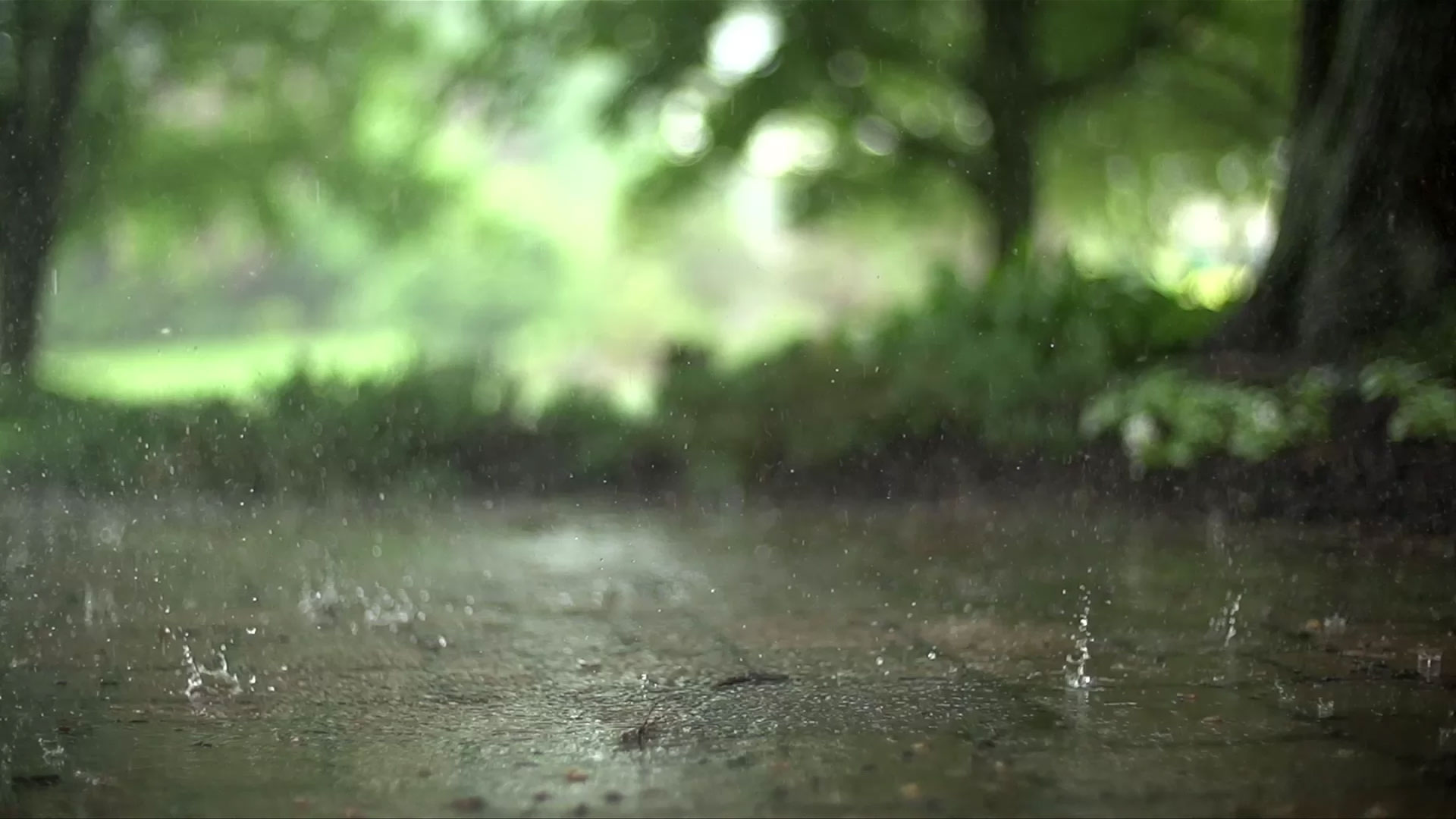 basement waterproofing b dry system cleveland rh bdrycleveland com